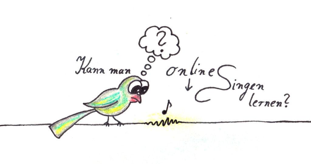 Stimmbildung Online