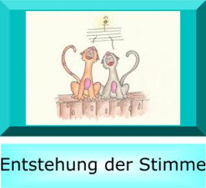 Klassischer Gesangsunterricht Lübeck 6